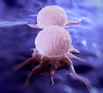 two cancer cells