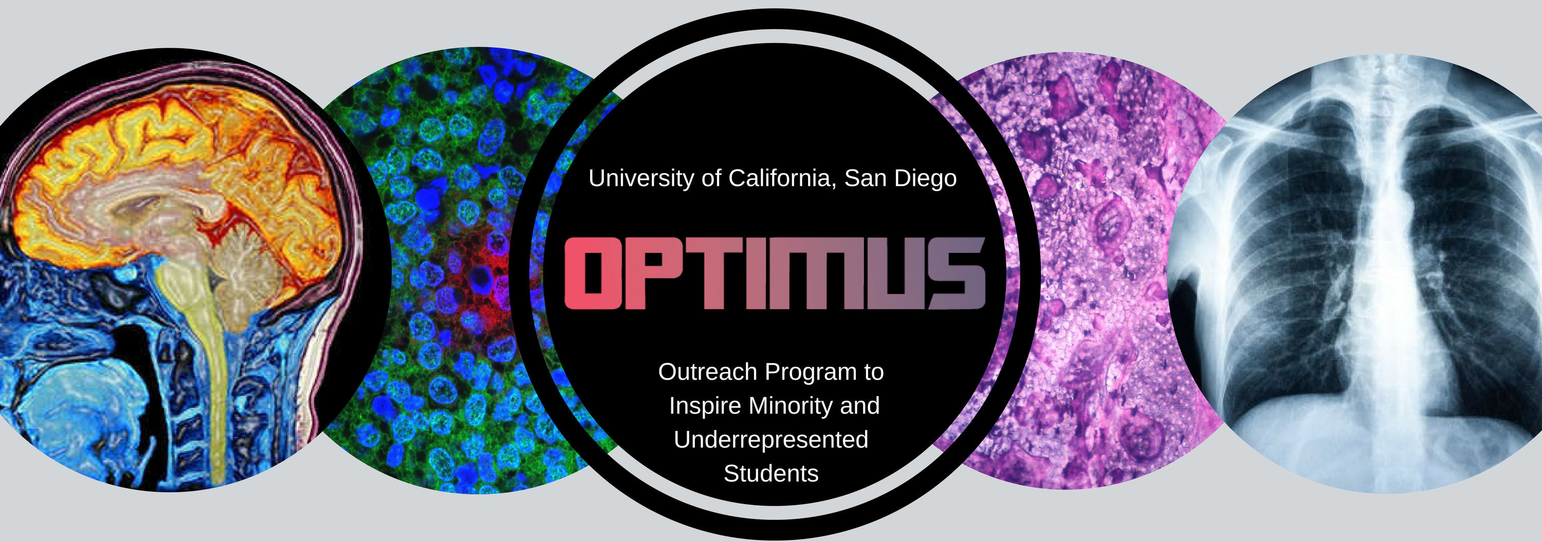 University of California, San Diego<br>OPTIMUS<br>Outreach Program to Inspire Minority and Underrepresented Students