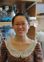 Lirui Wang, PhD