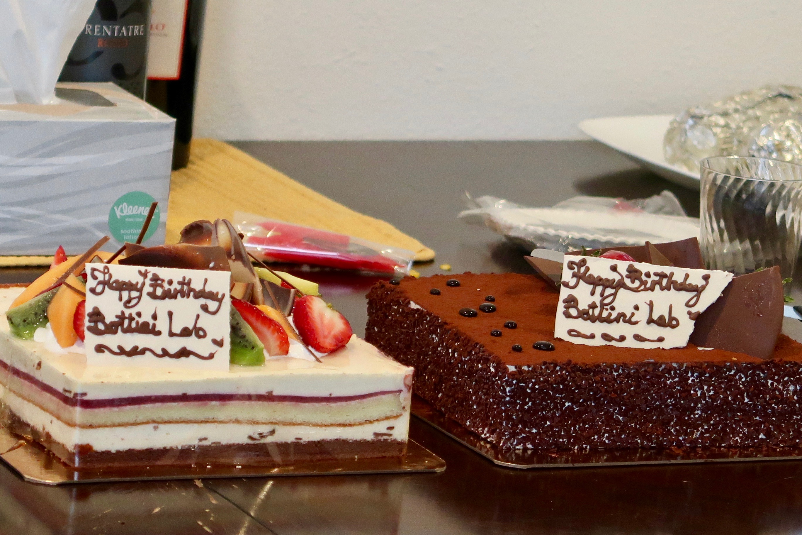 Bottini Lab Party Cakes