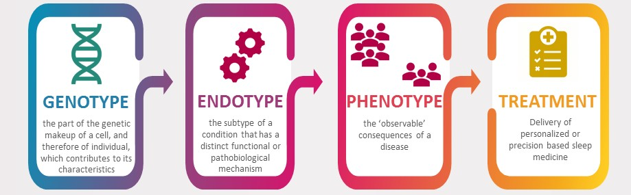 Endotype and phenotype graphic