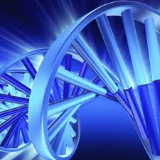 Graphic of DNA helix