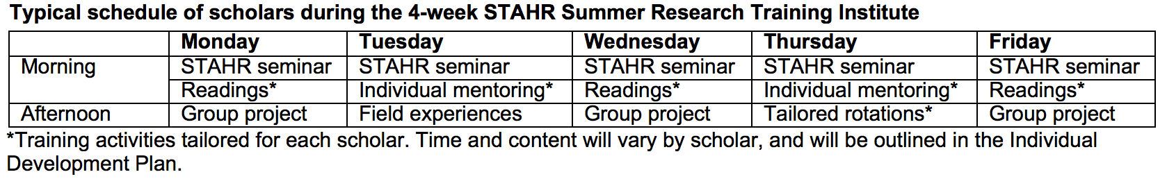 Typical Schedule of Scholars during STAHR Summer Research Institute
